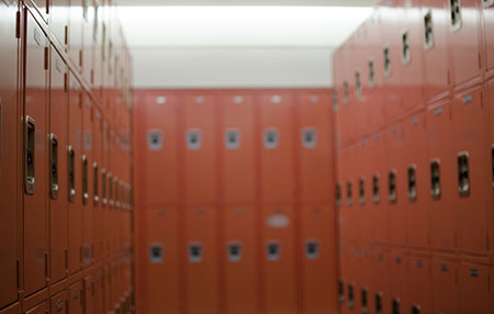 Electrostatic Painted Lockers in Georgia